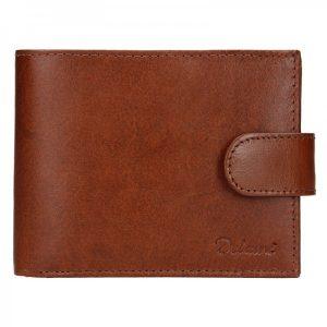 Pánská kožená peněženka Diviley Loris – hnědá