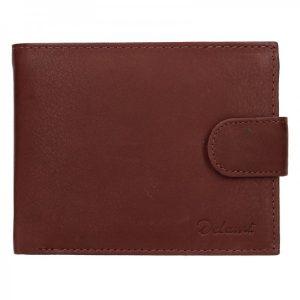 Pánská kožená peněženka Diviley Albert – hnědá