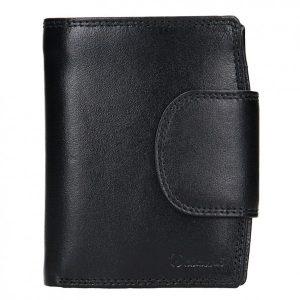 Pánská kožená peněženka Diviley Mars – černá