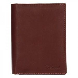 Pánská kožená peněženka Diviley Merkur – hnědá