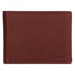 Pánská kožená peněženka Diviley Apolo – hnědá