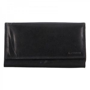 Dámská kožená peněženka Diviley Lorra – černá