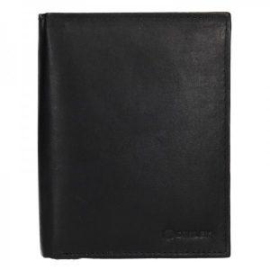 Pánská kožená peněženka Diviley Levin – černá