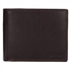 Pánská kožená peněženka Diviley Evžen – tmavě hnědá