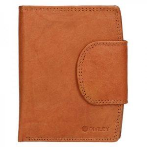 Pánská kožená peněženka Diviley Luiss – koňak
