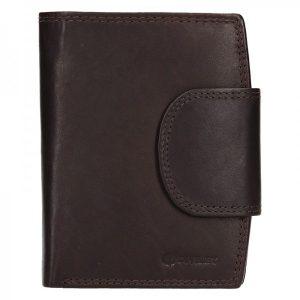 Pánská kožená peněženka Diviley Luiss – hnědá