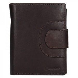 Pánská kožená peněženka Diviley Timmy – tmavě hnědá