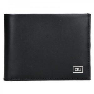 Pánská kožená peněženka Calvin Klein Levin – černá