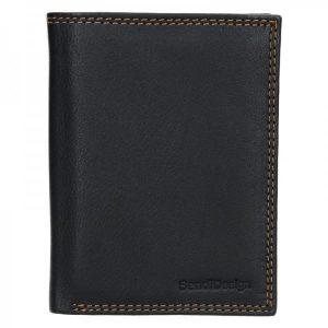 Dámská kožená peněženka SendiDesign Tibor – černá