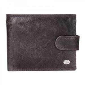 Pánská kožená peněženka DD Anekta Leo – hnědá