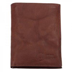 Pánská kožená peněženka SendiDesign SNW6945 – tmavě hnědá