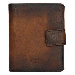 Pánská kožená peněženka Daag P11 – hnědá