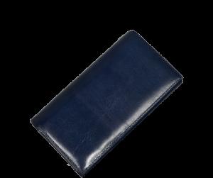 H17 Blu