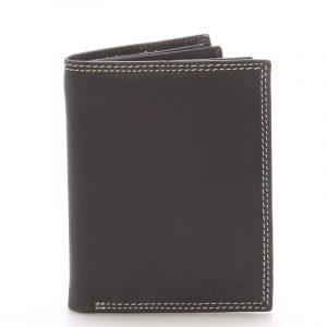 Pánská kožená peněženka černá – Delami Tui černá
