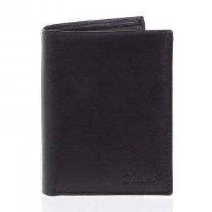Pánská prostorná volná peněženka černá – Delami 2931CHA černá