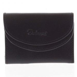 Malá kožená peněženka černá – Diviley Akili BA černá