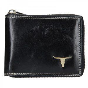Pánská kožená peněženka Wild Buffalo Neuron – černá