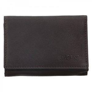 Dámská kožená peněženka Lagen Leonas – hnědá
