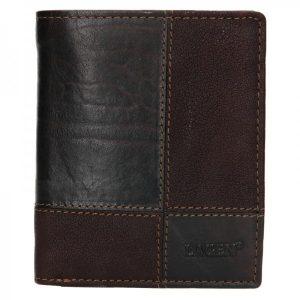 Pánská kožená peněženka Lagen Apolo – tmavě hnědá