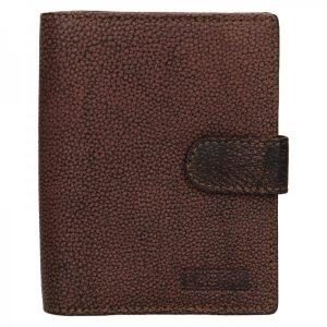 Dámská kožená peněženka Lagen Bronia – hnědá