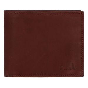 Pánská kožená peněženka hnědá – Delami Kerman Two hnědá