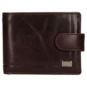 Pánská kožená peněženka Rovicky Fabio – hnědá