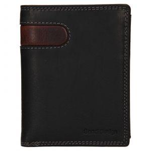 Pánská kožená peněženka SendiDesign Ulrich – černo-hnědá