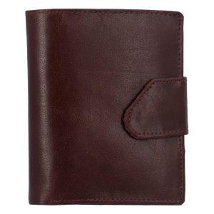 Pánská lesklá kožená peněženka hnědá – Tomas 75VO hnědá