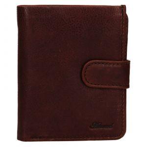 Pánská kožená peněženka Ashwood Harry – hnědá